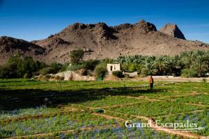 Wadi close to Tanuf Ruins, Sultanat of Oman, Arabic Peninsula