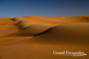 Sand Dunes, Wahiba Sands, or Ramlat al-Wahiba (also called Sharqiya Sands), Sultanat of Oman, Arabic Peninsula