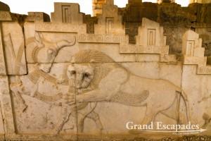 Persepolis - The Apadana, Persepolis & Pasargadae, Iran