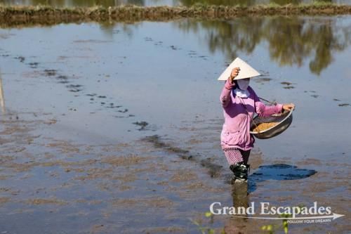 Around Hoi An, Vietnam