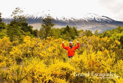 Volcano Osorno, near Lago Todos Los Sanctos and the city of Petrohue, Puerto Montt