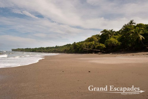 Situated on Punta Burica, on the western Pacific Coast next to the Costa Rican border, the 7 hectares of secondary forest of the Mono Feliz are next to a deserted beach - Golfo de Chiriqui, Panama