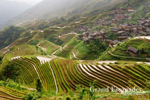Rice Terraces of Ping'An, China