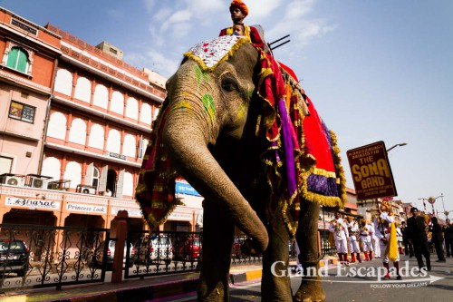 Witnessing one of the many processions (this time for peace in the world...) in Jaipur, the Pink City, Rajasthan, India
