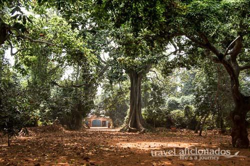 Sacred Forest, Ouidah